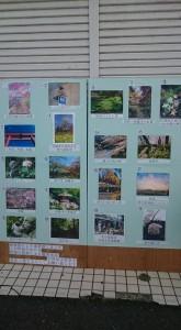 柿生写真コンテスト1